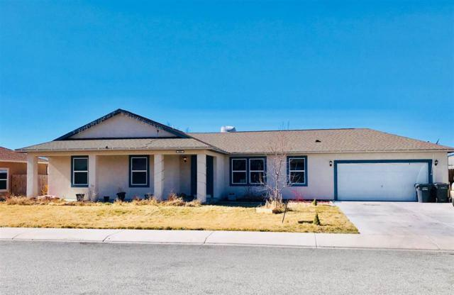 840 Cabernet Drive, Palisade, CO 81526 (MLS #20180882) :: CapRock Real Estate, LLC