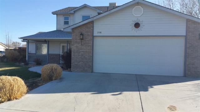 258 Dogwood Drive, Fruita, CO 81521 (MLS #20181029) :: The Christi Reece Group
