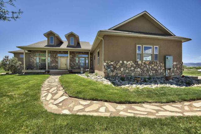 225 Meeka Court, Grand Junction, CO 81503 (MLS #20181077) :: The Grand Junction Group