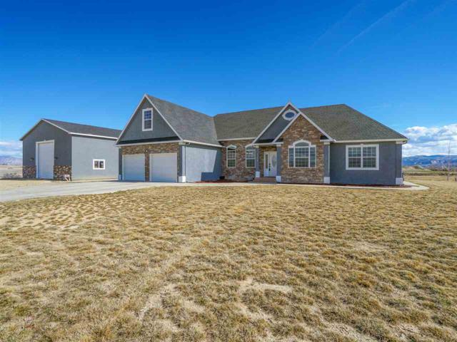 1318 Gold Lake Drive, Loma, CO 81524 (MLS #20181383) :: Keller Williams CO West / Mountain Coast Group