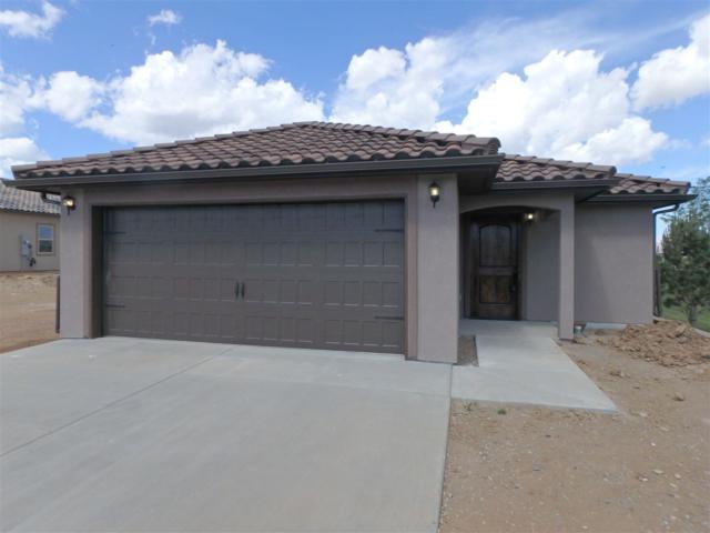 221 Trevor Mesa Drive, Grand Junction, CO 81503 (MLS #20181534) :: The Christi Reece Group