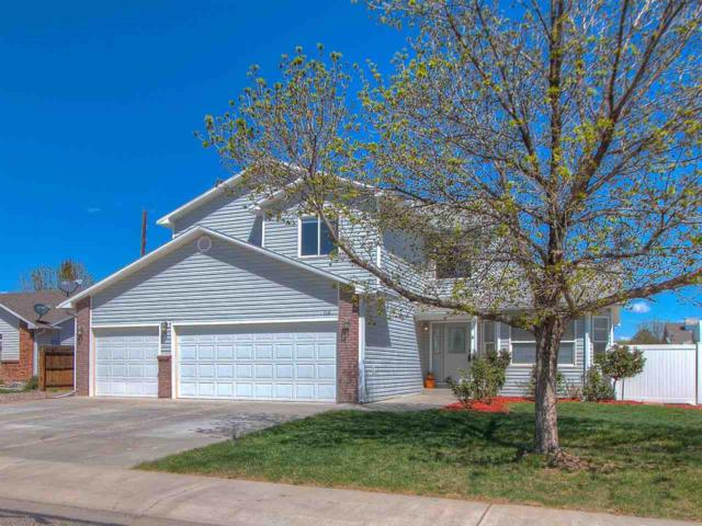 116 Elderberry Drive, Fruita, CO 81521 (MLS #20182539) :: The Christi Reece Group