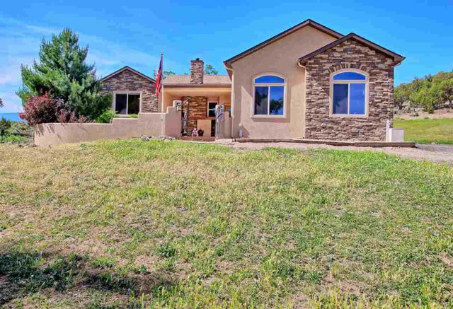 10987 48 1/4 Road, Mesa, CO 81643 (MLS #20183070) :: The Grand Junction Group
