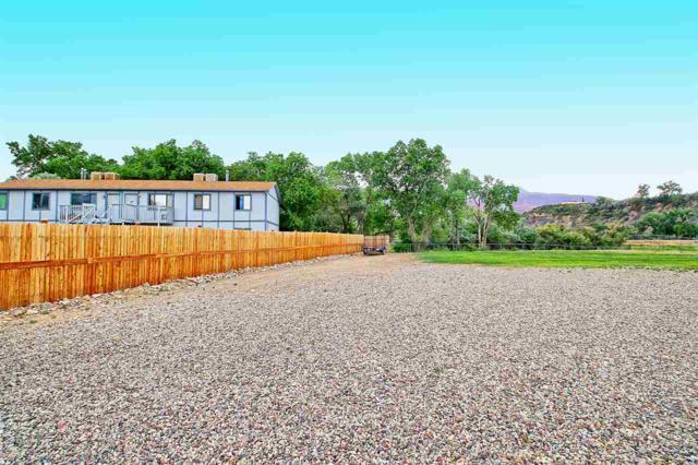 999 Iowa Avenue, Palisade, CO 81526 (MLS #20183401) :: CapRock Real Estate, LLC