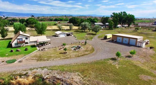 3402 Ash Mesa Road, Delta, CO 81416 (MLS #20183448) :: The Grand Junction Group