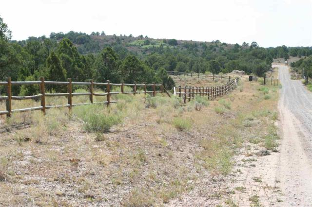LOT 1 Elk Ranch Road, Glade Park, CO 81523 (MLS #20184698) :: The Grand Junction Group with Keller Williams Colorado West LLC