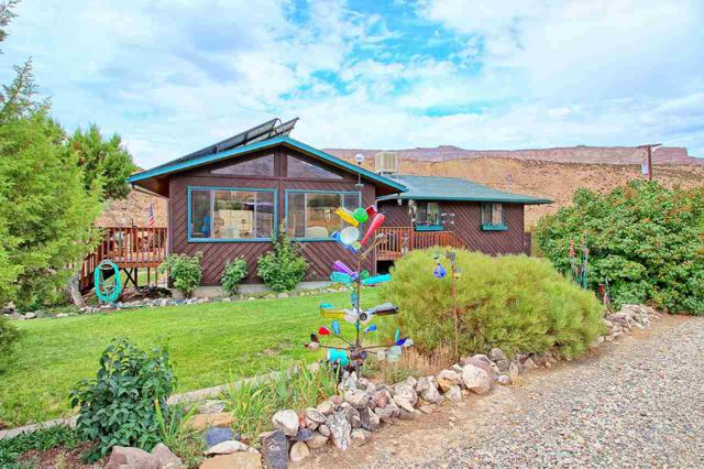 857 Rapid Creek Road, Palisade, CO 81526 (MLS #20184831) :: The Christi Reece Group