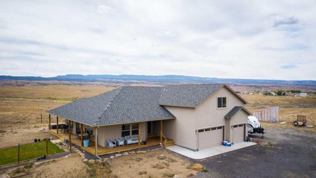 877 Blair Road, Whitewater, CO 81527 (MLS #20184874) :: The Christi Reece Group