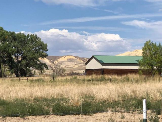 3772 Blair Road, Whitewater, CO 81527 (MLS #20185049) :: The Christi Reece Group