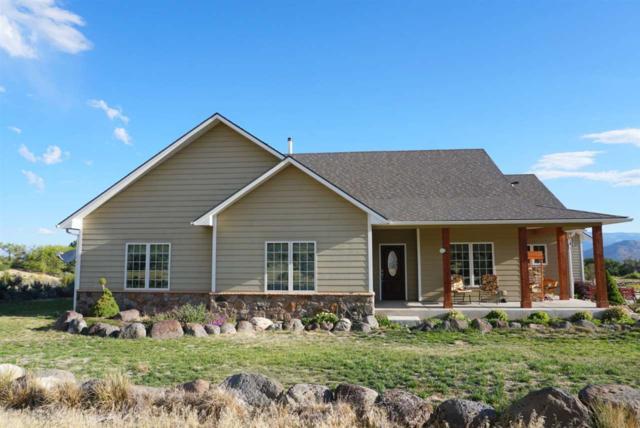 9867 49 1/4 Road, Mesa, CO 81643 (MLS #20185194) :: CapRock Real Estate, LLC