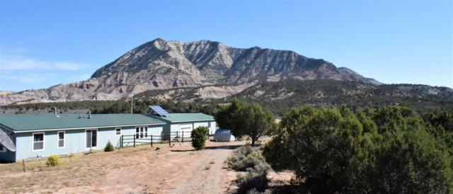 47875 V Road, De Beque, CO 81630 (MLS #20185467) :: The Christi Reece Group
