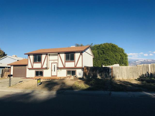 556 31 3/4 Road, Grand Junction, CO 81504 (MLS #20185764) :: The Borman Group at eXp Realty