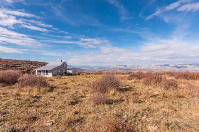 53000 Bull Basin Road, Mesa, CO 81643 (MLS #20185914) :: The Christi Reece Group