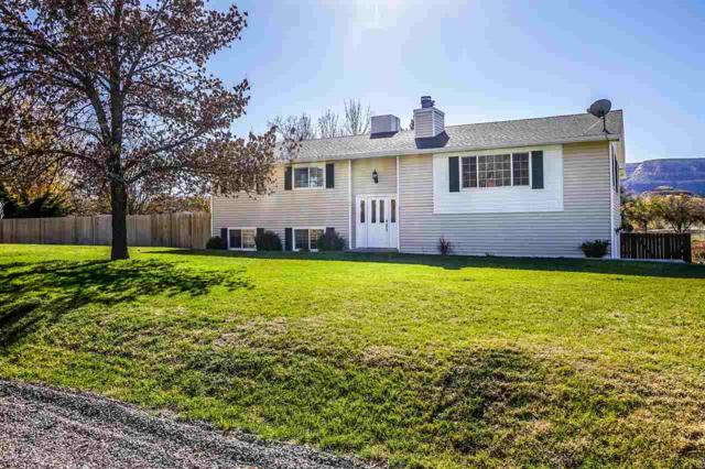 587 Rambling Road, Grand Junction, CO 81507 (MLS #20186138) :: Keller Williams CO West / Mountain Coast Group