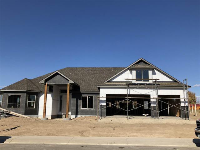 1003 Adobe View Way, Fruita, CO 81521 (MLS #20186165) :: CapRock Real Estate, LLC