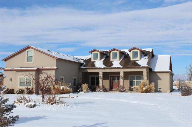 823 Mease Road, Grand Junction, CO 81505 (MLS #20186762) :: The Christi Reece Group