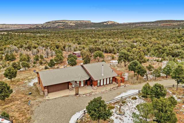 4740 S 7 1/2 Road, Glade Park, CO 81523 (MLS #20190024) :: The Christi Reece Group