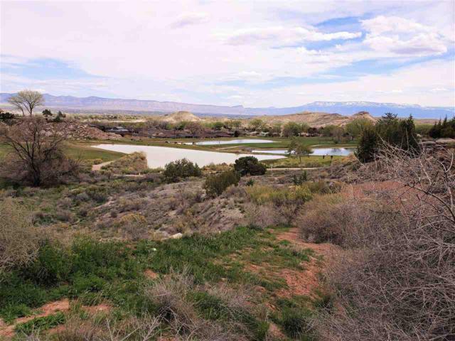 462 High Tiara Court, Grand Junction, CO 81507 (MLS #20190331) :: CapRock Real Estate, LLC