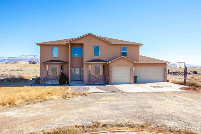1108 Dyer Road, Whitewater, CO 81527 (MLS #20190453) :: The Grand Junction Group