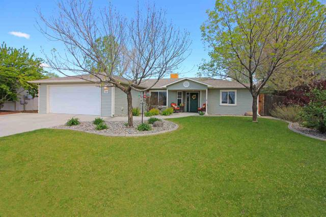 228 Drumlin Circle, Fruita, CO 81521 (MLS #20190925) :: The Grand Junction Group with Keller Williams Colorado West LLC