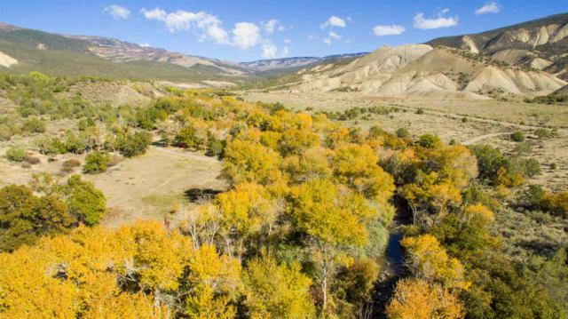8250,8570,8900 Kannah Creek Road, Whitewater, CO 81527 (MLS #20190986) :: The Christi Reece Group