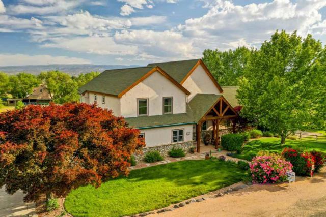 661 Larkspur Lane, Grand Junction, CO 81506 (MLS #20191066) :: The Grand Junction Group with Keller Williams Colorado West LLC