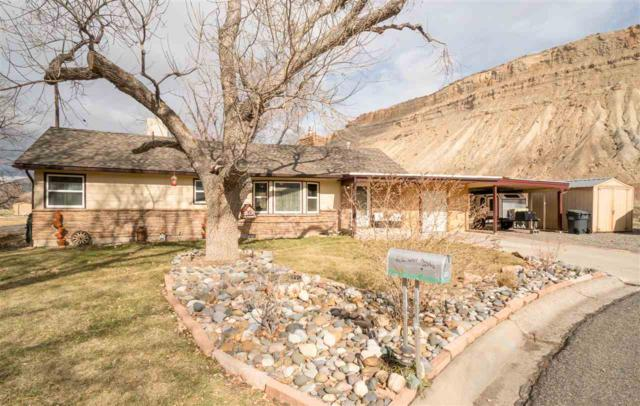 164 Victoria Drive, Palisade, CO 81526 (MLS #20191234) :: The Christi Reece Group