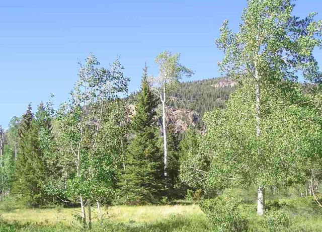 Lot 25 Deer Park, Antonito, CO 81120 (MLS #20191382) :: The Grand Junction Group