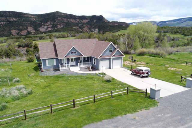14750 N Ouray Court, Collbran, CO 81624 (MLS #20191652) :: CapRock Real Estate, LLC