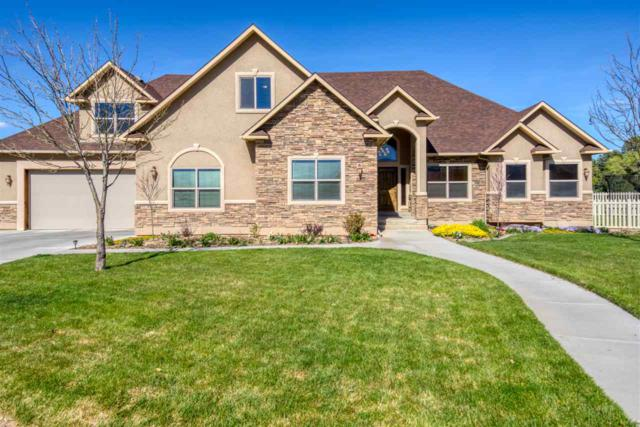 425 Elmwood Court, Fruita, CO 81521 (MLS #20192037) :: The Grand Junction Group with Keller Williams Colorado West LLC