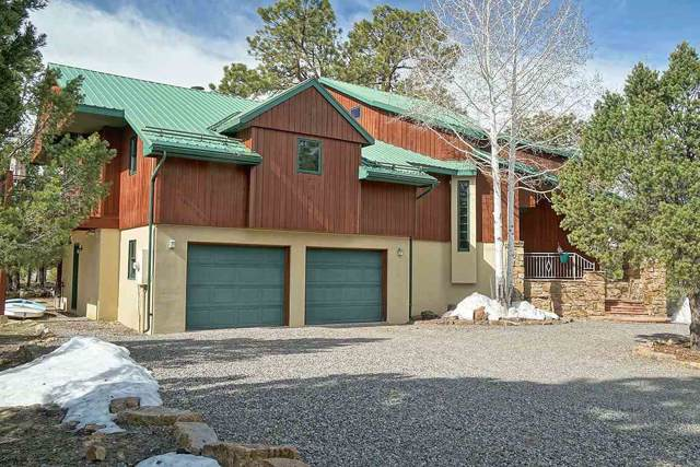 32 Woodchuck Place, Ridgway, CO 81432 (MLS #20192039) :: The Christi Reece Group