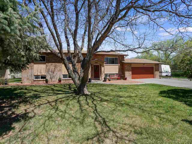 568 Sunny Meadow Lane, Grand Junction, CO 81507 (MLS #20192062) :: CapRock Real Estate, LLC