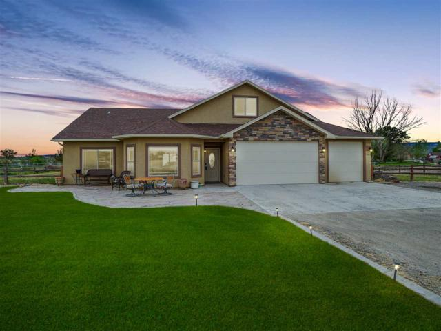 1853 Golden Ranch Road, Fruita, CO 81521 (MLS #20192470) :: CapRock Real Estate, LLC