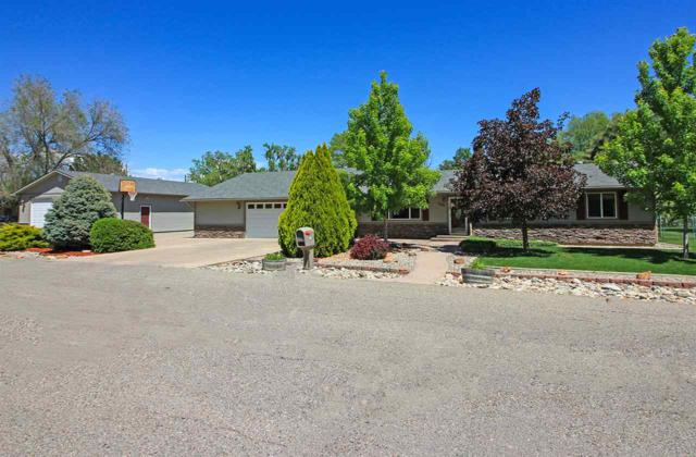 1687 Ruby Lee Drive, Fruita, CO 81521 (MLS #20192669) :: The Grand Junction Group with Keller Williams Colorado West LLC