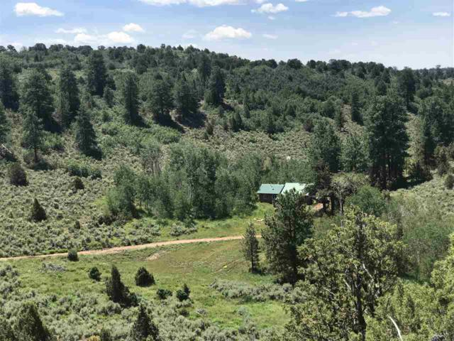 6501 Uncompahgre Divide Road, Whitewater, CO 81527 (MLS #20192725) :: The Grand Junction Group with Keller Williams Colorado West LLC