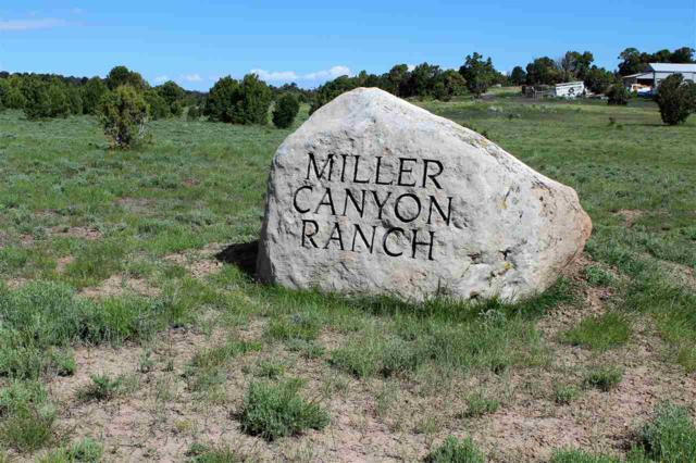 TBD Miller Canyon Ranch Road, Glade Park, CO 81523 (MLS #20192789) :: The Christi Reece Group