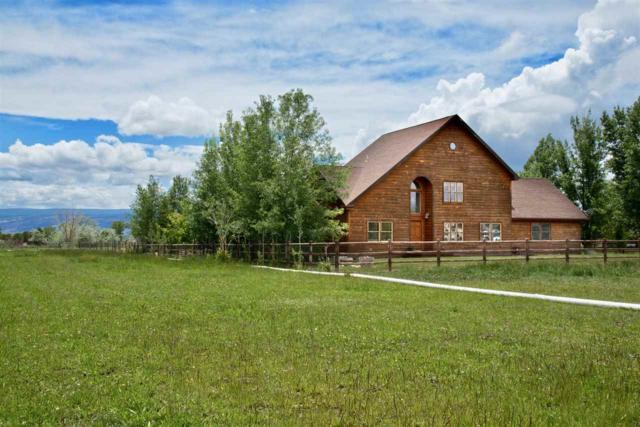 2275 Homestead Drive, Grand Junction, CO 81505 (MLS #20192820) :: The Christi Reece Group