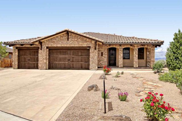 2668 Liberty View Court, Grand Junction, CO 81503 (MLS #20192823) :: The Christi Reece Group