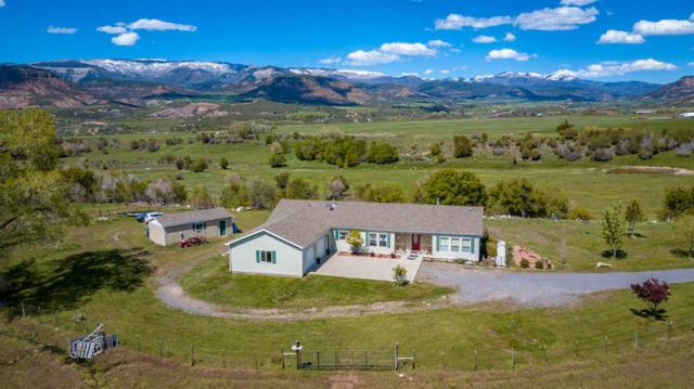 57612 Oe Road, Collbran, CO 81624 (MLS #20192919) :: The Grand Junction Group with Keller Williams Colorado West LLC