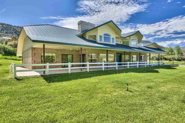 54210 Highway 330, Collbran, CO 81624 (MLS #20193017) :: The Grand Junction Group with Keller Williams Colorado West LLC