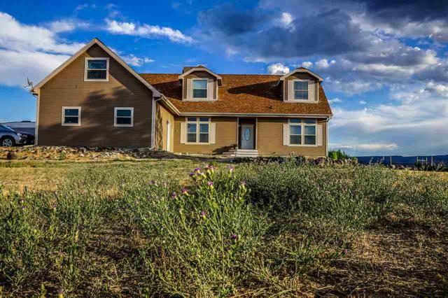 3501 Silverstone Drive, Whitewater, CO 81527 (MLS #20193961) :: The Grand Junction Group with Keller Williams Colorado West LLC