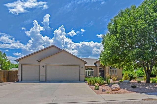 2035 Wrangler Court, Grand Junction, CO 81507 (MLS #20193963) :: CapRock Real Estate, LLC