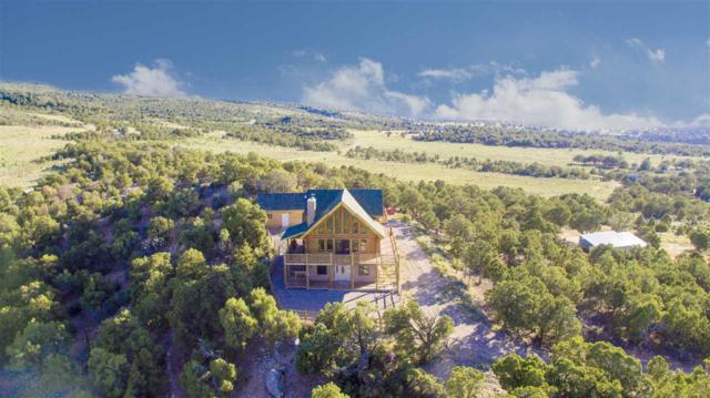 18342 Miller Canyon Ranch Road, Glade Park, CO 81523 (MLS #20193977) :: CapRock Real Estate, LLC