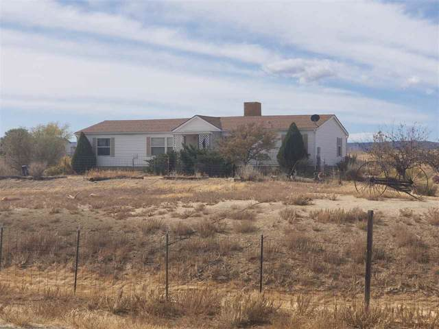 3101 Blair Road, Whitewater, CO 81527 (MLS #20195205) :: The Christi Reece Group