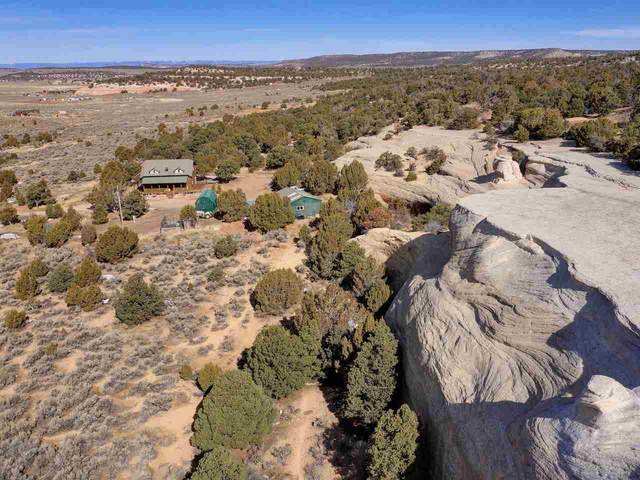 14270 As 1/4 Road, Glade Park, CO 81523 (MLS #20195242) :: The Grand Junction Group with Keller Williams Colorado West LLC
