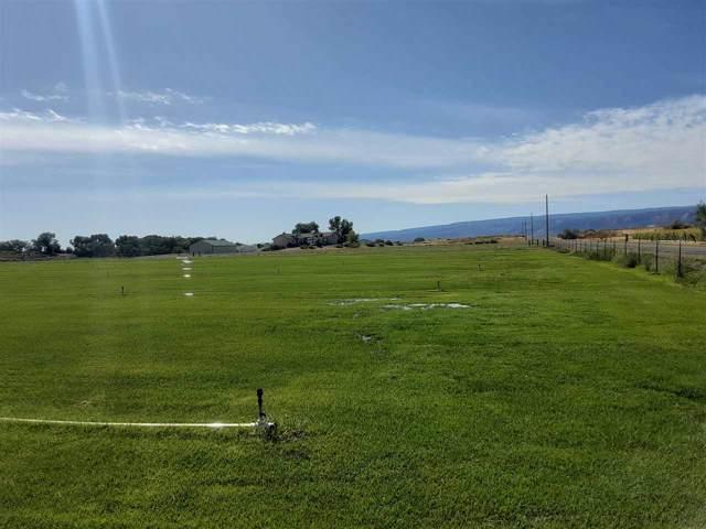 1136 22 1/2 Road, Grand Junction, CO 81505 (MLS #20195371) :: The Danny Kuta Team