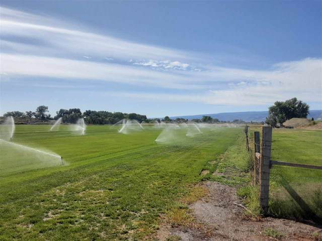 1134 22 1/2 Road, Grand Junction, CO 81505 (MLS #20195424) :: The Christi Reece Group