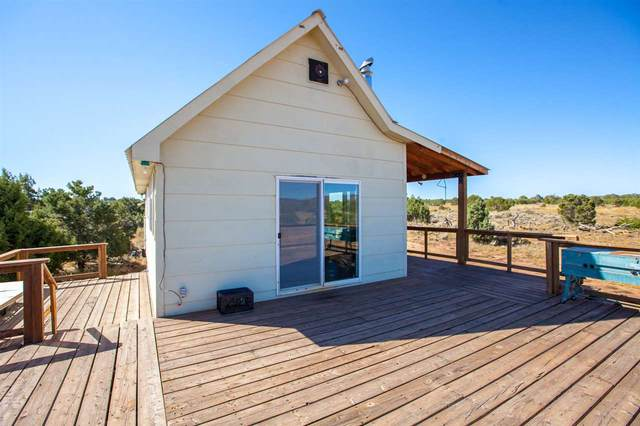 6531 Uncompahgre Divide Road, Whitewater, CO 81527 (MLS #20195495) :: CENTURY 21 CapRock Real Estate