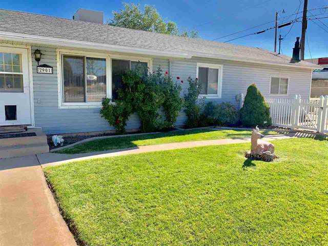 2901 Ronda Lee Road, Grand Junction, CO 81503 (MLS #20195580) :: The Christi Reece Group