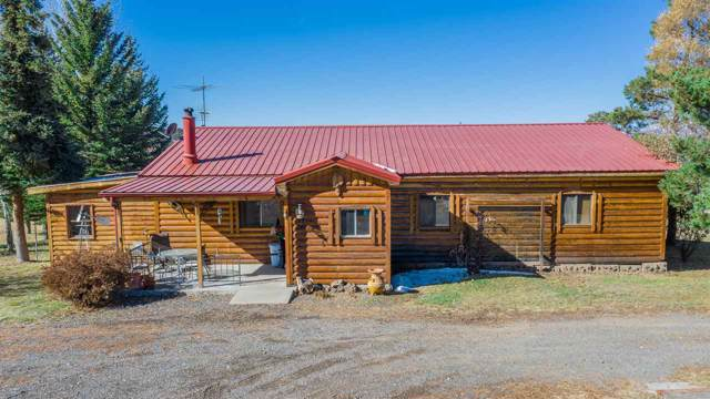58249 Me Road, Collbran, CO 81624 (MLS #20195960) :: CapRock Real Estate, LLC